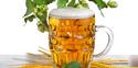 统治者啤酒